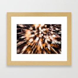Geometric Firework 17 Framed Art Print