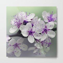 Modern blossom white violet green ombre floral Metal Print