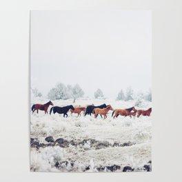 Winter Horse Herd Poster