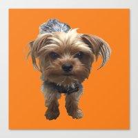 terrier Canvas Prints featuring Terrier by Pop Art Pet Portraits