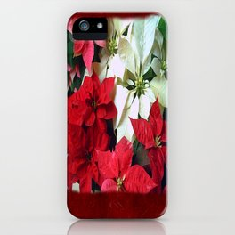 Mixed color Poinsettias 1 Blank P5F0 iPhone Case