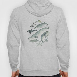 Watercolour whales and dolphins Hoody