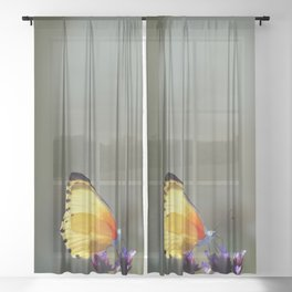 Yellow butterfly Sheer Curtain