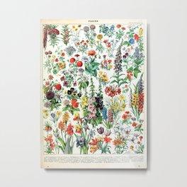 Adolphe Millot - Fleurs A - French vintage poster Metal Print