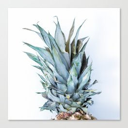 Ananas - Pineapple On A White Background #decor #society6 Canvas Print