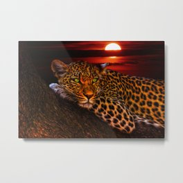 Leopard Big Cats Sunset Wildlife Leopards Art Metal Print