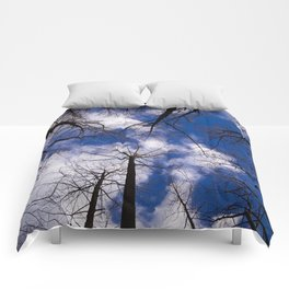Circle of Trees and Blue Skys Comforters