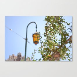 Lamp lit Afternoon Canvas Print