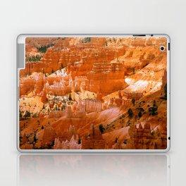 Bryce Canyon LH2 Laptop & iPad Skin