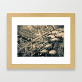 Mushrooms on a stump Framed Art Print