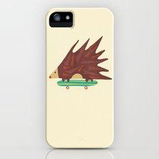 Hedgehog in hair raising speed Slim Case iPhone (5, 5s)