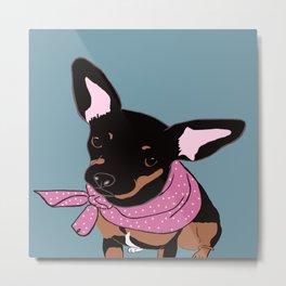 Sweet Chihuahua Metal Print