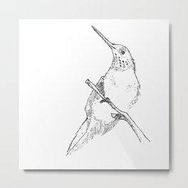 bird sketch Metal Print
