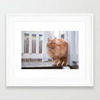 garfield Framed Art Prints featuring Garfield by maisie ong