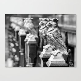 Leeds Owls Canvas Print