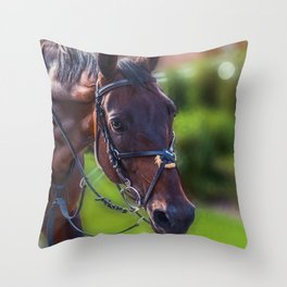 Horse Wall Art, Horse Portrait. Horse looking straight forward closeup. Throw Pillow