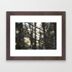 Twigs at Dusk Framed Art Print