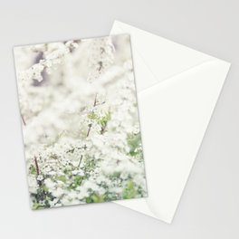 Spring is in the air  Stationery Cards