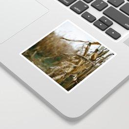 Autumn Cornstalk II Sticker