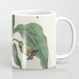 Deadly nightshade (Atropa belladonna)  from Medical Botany (1836) by John Stephenson and James Morss Coffee Mug