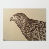 hawk Canvas Prints featuring Hawk by Leslie Creveling