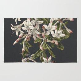 M. de Gijselaar - Branch of blooming azalea (1831) Rug