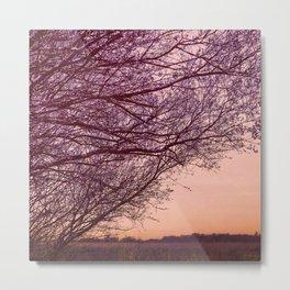 Purple Tree, Coral Orange Sky Metal Print