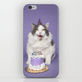 Happy Birthday Fat Cat In Party Hat With Cake iPhone Skin