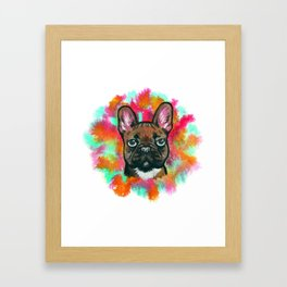 French Bulldog Frenchie Explosion Framed Art Print
