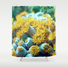 Field of yellow flower anemone Shower Curtain
