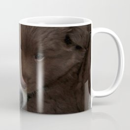 IcelandicSheepdog_20171203_by_JAMFoto Coffee Mug