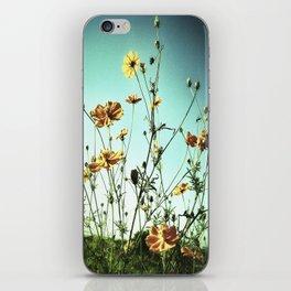002 iPhone Skin