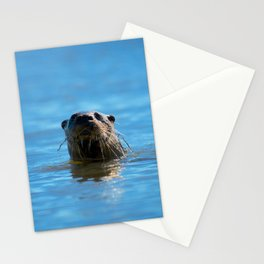 Sup Stationery Cards