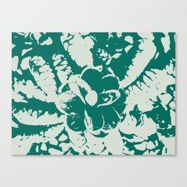 green Pine cones Canvas Print