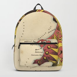 Wales Pictorial Map Backpack