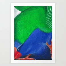 Takahe Art Print