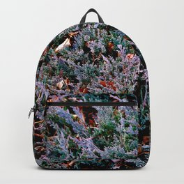 Lost in the Frenzy Backpack