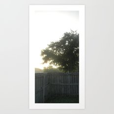 morning fences Art Print