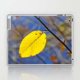 Yellow leaf against blue sky Laptop & iPad Skin