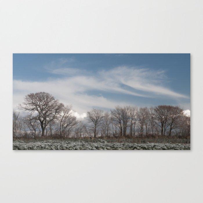Suburban trees (n.3) Canvas Print