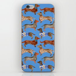 Dachshunds – Cornflower Blue Palette iPhone Skin