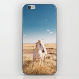 West Texas Wild IV iPhone Skin