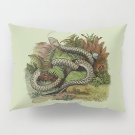 Snake Wildlife Illustration Pillow Sham