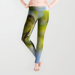 Yellow Bird - I Leggings