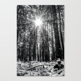 The Snow Melts Canvas Print