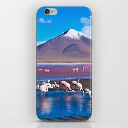 Laguna Colorada, Bolivia iPhone Skin
