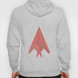 Nighthawk in the sky with diamonds Hoody