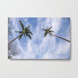 palm skies Metal Print