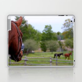 View from the next Paddock Laptop & iPad Skin