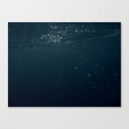 UNDERWATER III. Canvas Print